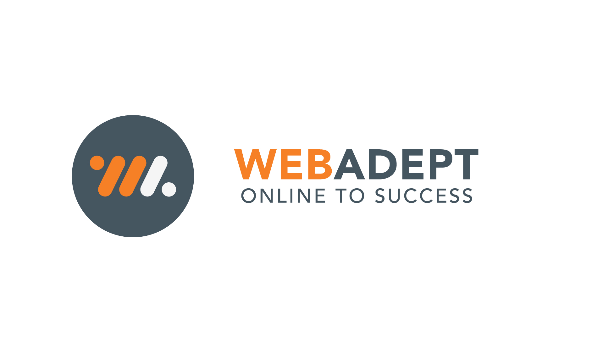 WebAdept and Focus Micro Systems new website